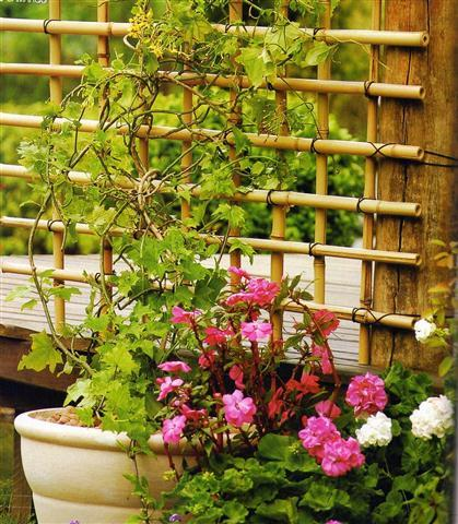 DIY Cerca Bambu 6