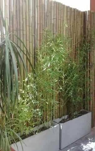 Ideias cercas bambu 7