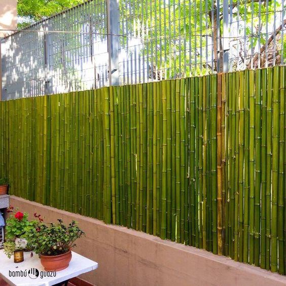 10 ideias de cercas de bambu for Como hacer un cubre piscinas