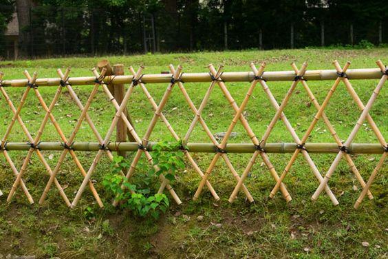 Ideias cercas bambu