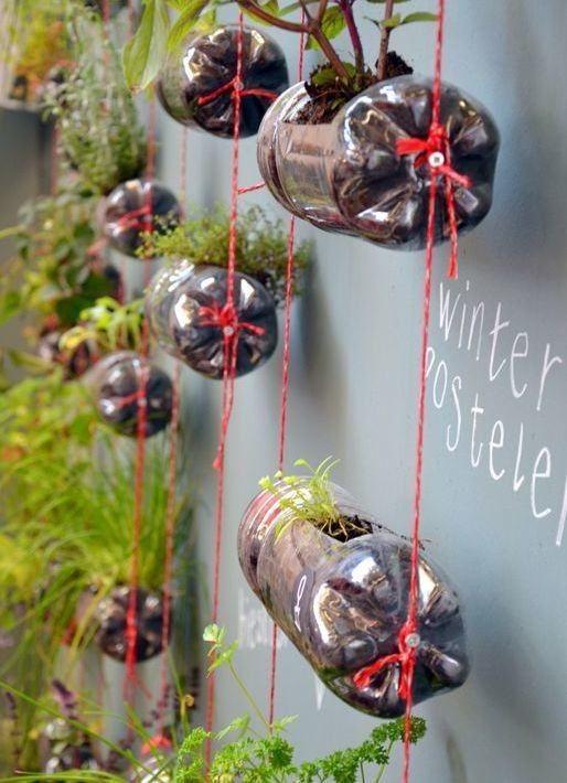 Jardim vertical garrafa PET cordas