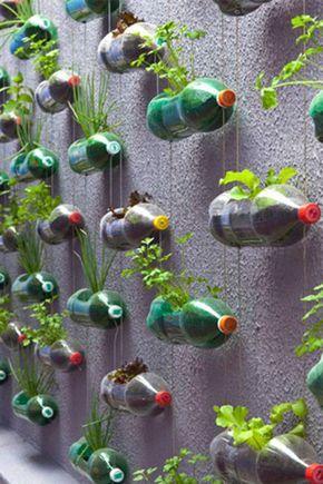 Jardim vertical garrafa PET muro