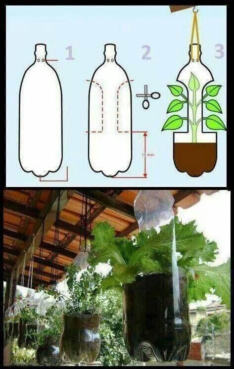 Jardim vertical garrafa PET passo passo