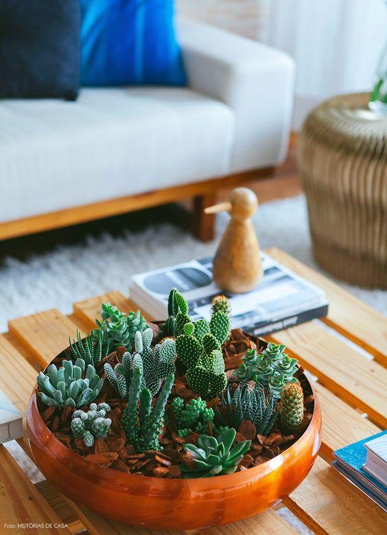 decoracao barata plantas 1