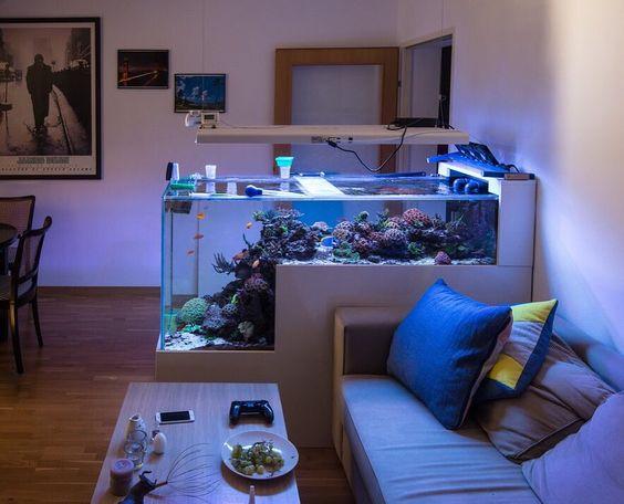 decoracao casa aquario divisao ambientes 1