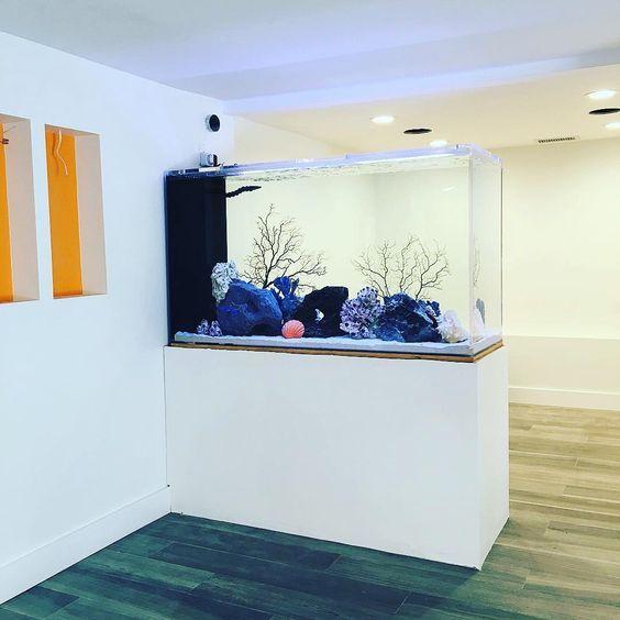 decoracao casa aquario divisao ambientes