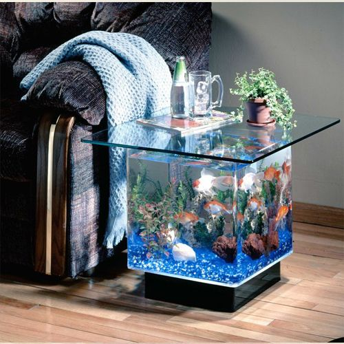 decoracao casa aquario ideias