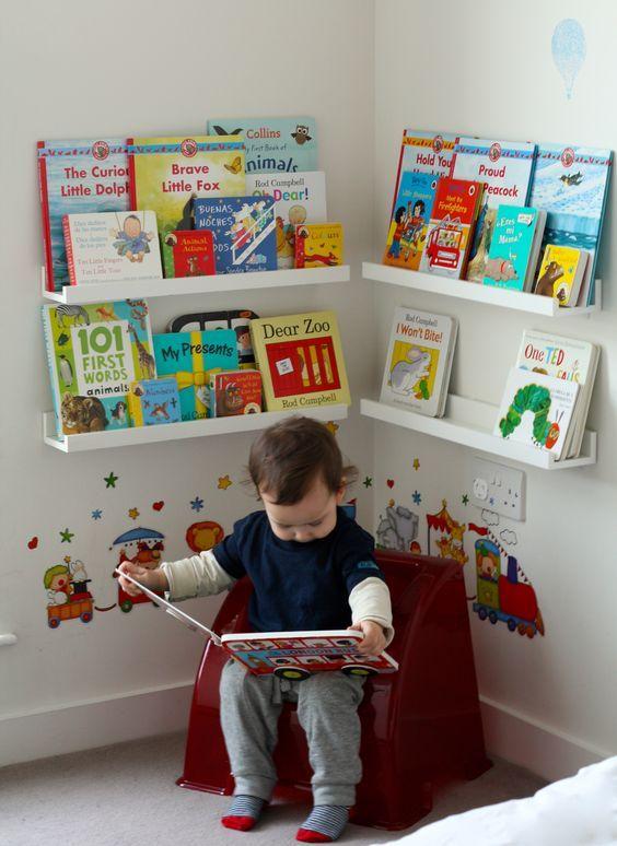 dicas organizar livros 2