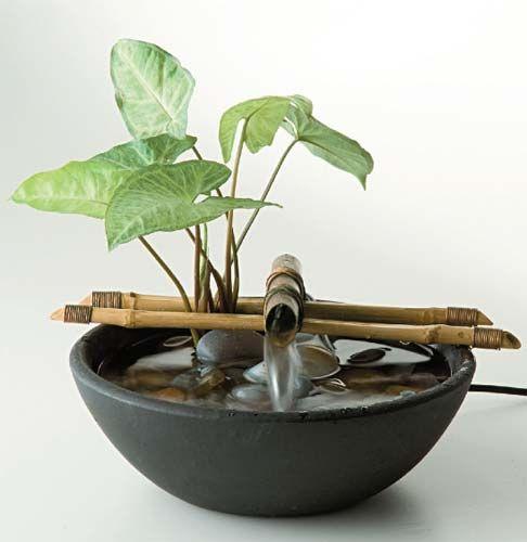 fazer fonte bambu vaso