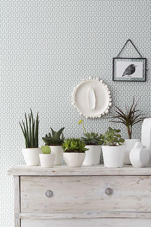 ideias fotos decoracao vasos 1