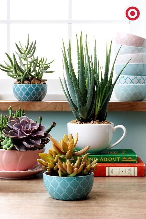 ideias fotos decoracao vasos