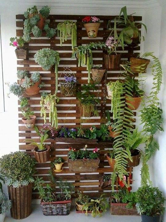 ideias muros decorados jardim vertical 1