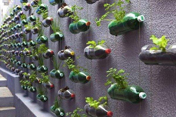jardim vertical garrafas